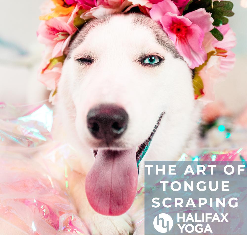 Art of Tongue Scraping | Halifax Power Vinyasa Yoga Studio